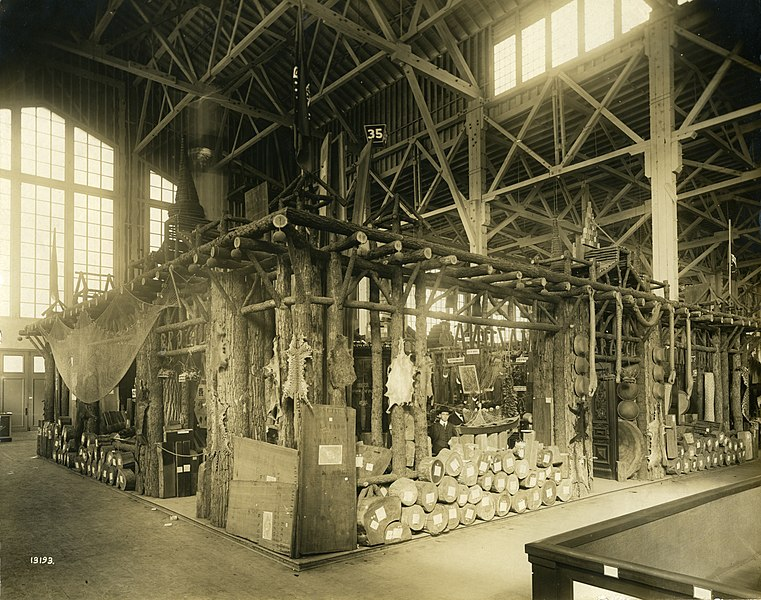 File:Brazil's display in the Department of Forestry, Fish, and Game at the 1904 World's Fair.jpg