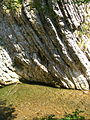 Breggia river CIMG1195.jpg