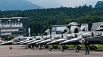 Breitling Jet Team L-39 20100724.jpg