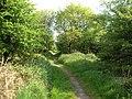 Bridlepath to North Hill - geograph.org.uk - 10621.jpg