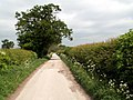 Bridleway from Furnace Bridge - geograph.org.uk - 442360.jpg