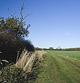 Bridleway to Sproatley - geograph.org.uk - 1572480.jpg