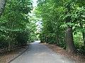 Bronx Zoo - NY - USA - panoramio (24).jpg