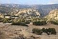Bsaira District, Jordan - panoramio (45).jpg