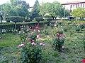 Buca Eğitim Fakültesi Kampüs Genel Görünüm - panoramio.jpg