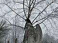 Bucuresti, Romania, Cimitirul Bellu Catolic (ingerul in iarna) (B-IV-a-B-20118) (detaliu cu cioara).JPG