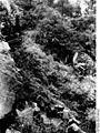 Bundesarchiv Bild 135-S-03-11-15, Tibetexpedition, Tistatal.jpg