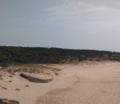 Bunker Playa El Cañuelo-Tarifa.png