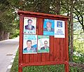 Busteni - election advertising.jpg