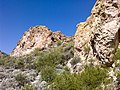 Butcher Jones Trail - Mt. Pinter Loop Trail, Saguaro Lake - panoramio (140).jpg