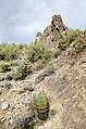 Butcher Jones Trail to Pinter's Point Loop, Tonto National Park, Saguaro Lake, Ft. McDowell, AZ - panoramio (26).jpg