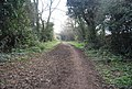 Byway to Oaklands Lane - geograph.org.uk - 2345974.jpg