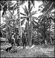 CH-NB - Portugal, San Thomé (São Tomé und Príncipe)- Menschen - Annemarie Schwarzenbach - SLA-Schwarzenbach-A-5-25-008.jpg