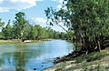 CSIRO ScienceImage 4403 View of Punkah Creek Chowilla SA.jpg