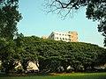 CYCU Campus.jpg