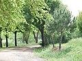 Cañada de Calatrava 18.jpg