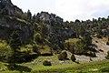 Cañon - panoramio (7).jpg