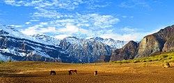 Caballos En La Cordillera (76473399).jpeg