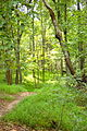 Caledon State Park (7987014596).jpg