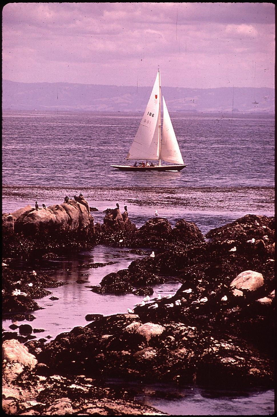 California - Monterey Bay - NARA - 543402