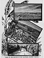 California Nursery Company 1888.jpg