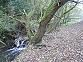 Calow Brook and Footpath - geograph.org.uk - 597636.jpg