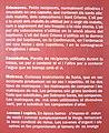 Camprodon 2012 07 15 034.jpg