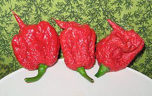 Carolina Reaper - Image: Carolina Reaper pepper pods