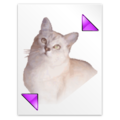 Cat icon from the Crystal Project icon theme.png