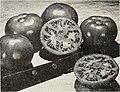 Catalog - spring 1963 (1963) (19955501923).jpg