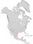 Cercocarpus breviflorus range map 0.png