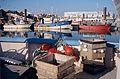 Chalutiers de pêche côtière (3).jpg