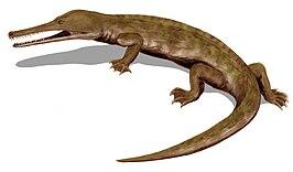 Champsosaurus BW.jpg