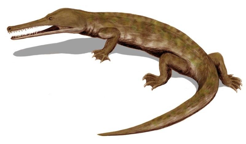 Champsosaurus BW