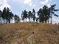 Cherkas'kyi district, Cherkas'ka oblast, Ukraine - panoramio (1608).jpg