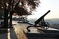 Chernihiv Гармати з бастіонів Чернігівської фортеці 2014 Photo 1.jpg