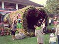 Chiang Rai Flower Festival.jpg