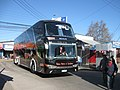 Chilebus (5).jpg