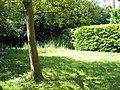 Churchyard at St John the Evangelist, Forton Road - geograph.org.uk - 1327643.jpg