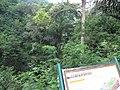 Ciburial, Cimenyan, Bandung, West Java, Indonesia - panoramio (1).jpg