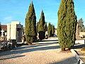 Cimetière protestant Bordeaux - Allée.jpg