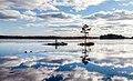 Clouds (32241695640).jpg