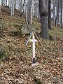 Cmentarz wojskowy z I wojny światowej na wzgórzu Pustki (Łużna) 15.JPG