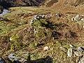 Cnoc Fionn Strath Cuil - geograph.org.uk - 1015467.jpg