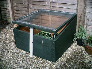 A picture of my coldframe
