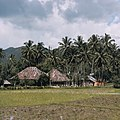 Collectie NMvWereldculturen, TM-20026529, Dia- 'Sawahs bij Bukittinggi', fotograaf Boy Lawson, 1971.jpg
