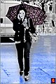 Colors In The Rain (65793633).jpeg
