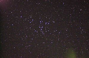 Coma Star Cluster - Image: Coma Cluster