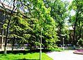 Communication University of China campus 10.jpg