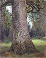 Constable - Study of an Elm Tree - c1821.jpeg